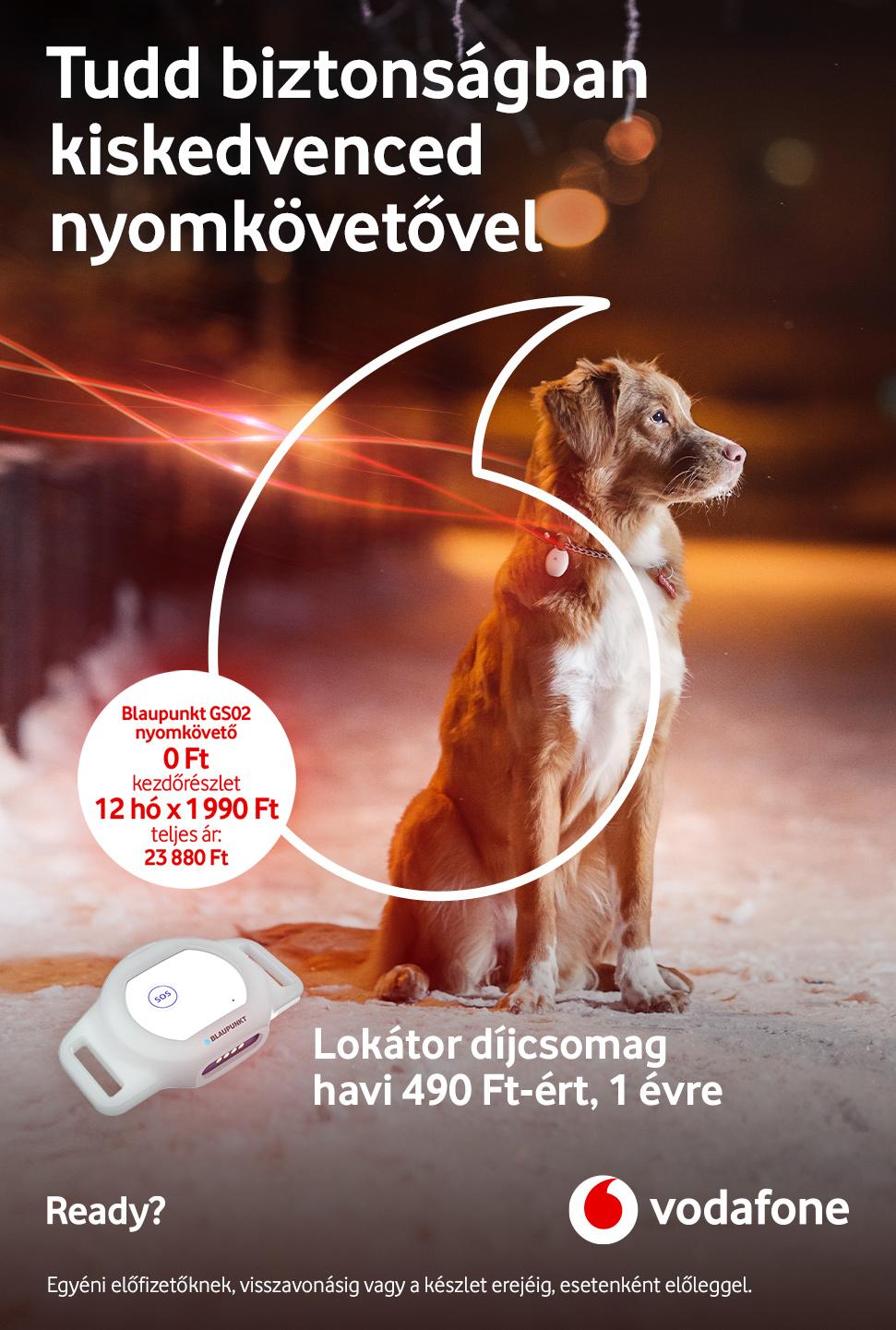 Vodafone Flotta EDS
